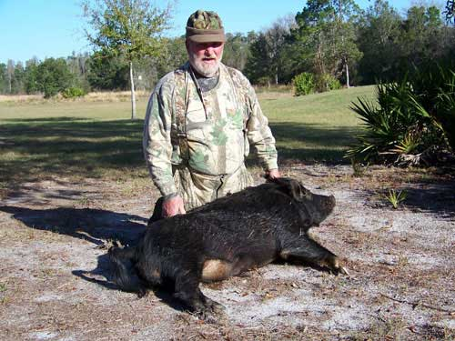 hunting-in-florida-hog-hunting-004