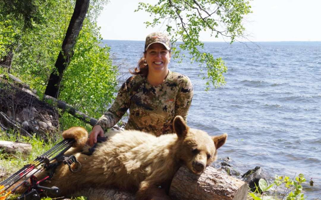 Chasing Blonde Bears in Saskatchewan