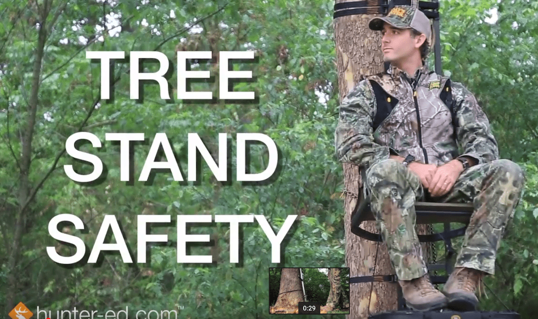 A Quick Reminder on Tree Stand Safety