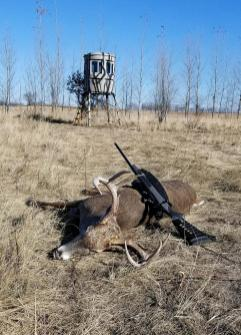 targets, prairie shooting, antlers, bankers hunt, professional investment, hunting land, venison sausage, financial consultant deer hunt, redneck country, pheasant, hunting dogs, kennel