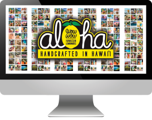 Social Media Marketing For Wow Wow Hawaiian Lemonade