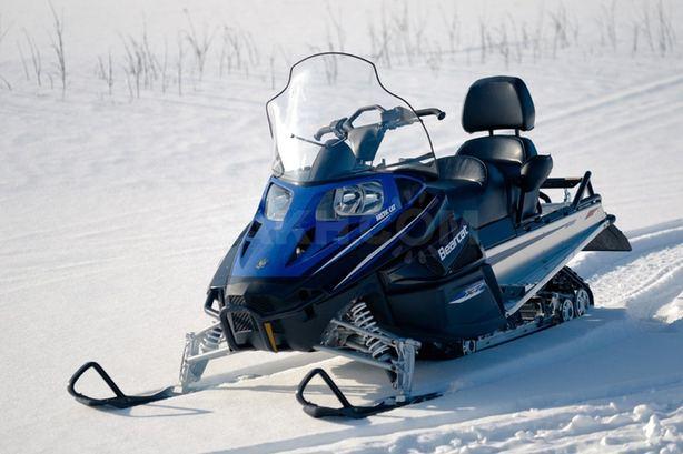 Сноуборд арктикалық мысық Z1