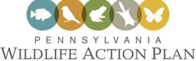 State_Wildlife_Action_Plan_logo500