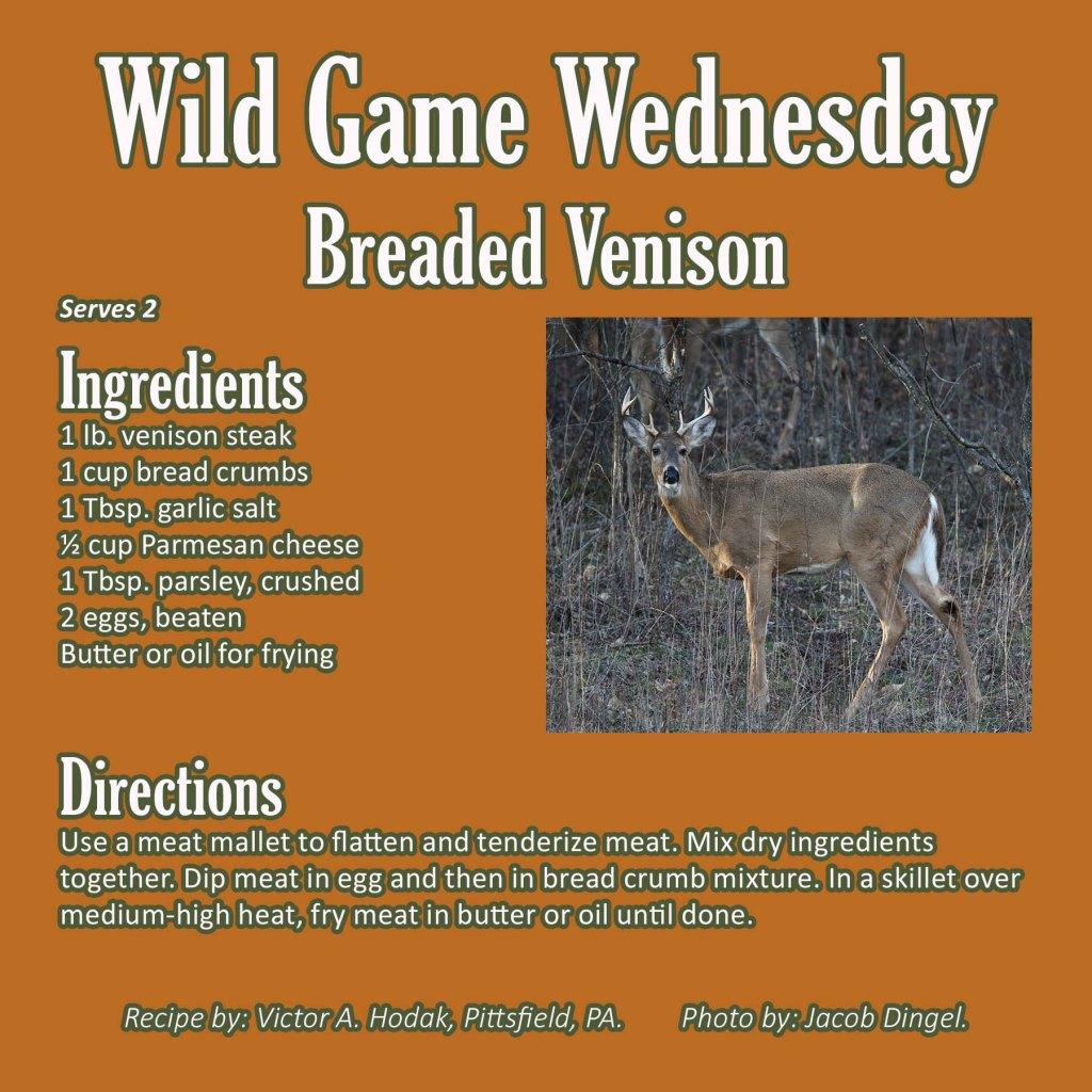 Breaded Venison