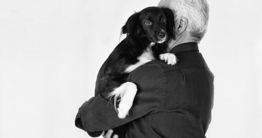 A pet trust as part of your long-term care plan