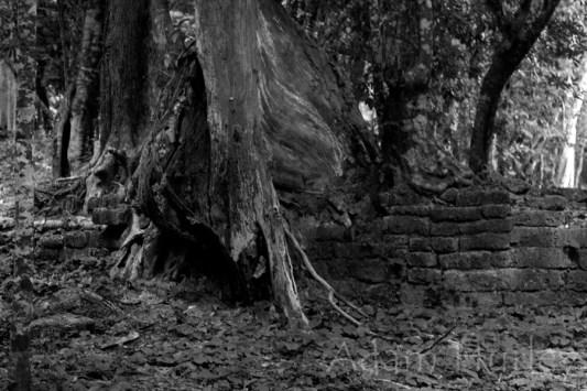 cambodiasept2015_MG_3863