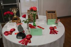 Awards table at the Huronia Rose Society 2016 Rose Show in Barrie