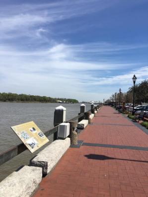 The Savannah walkway on Bay Street