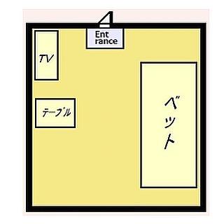 これ約3帖なんですよね。で、入り口が…猫用なのかな?猫専用の部屋なら豪邸#暗黒の#小部屋#ネコテレビ#ネコベッド#ネコテーブル#のある#ネコ専用#掃除できない#間取り図