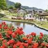 山形県村山市のふるさと納税