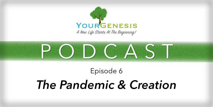 Your Genesis Pandemic & Creation