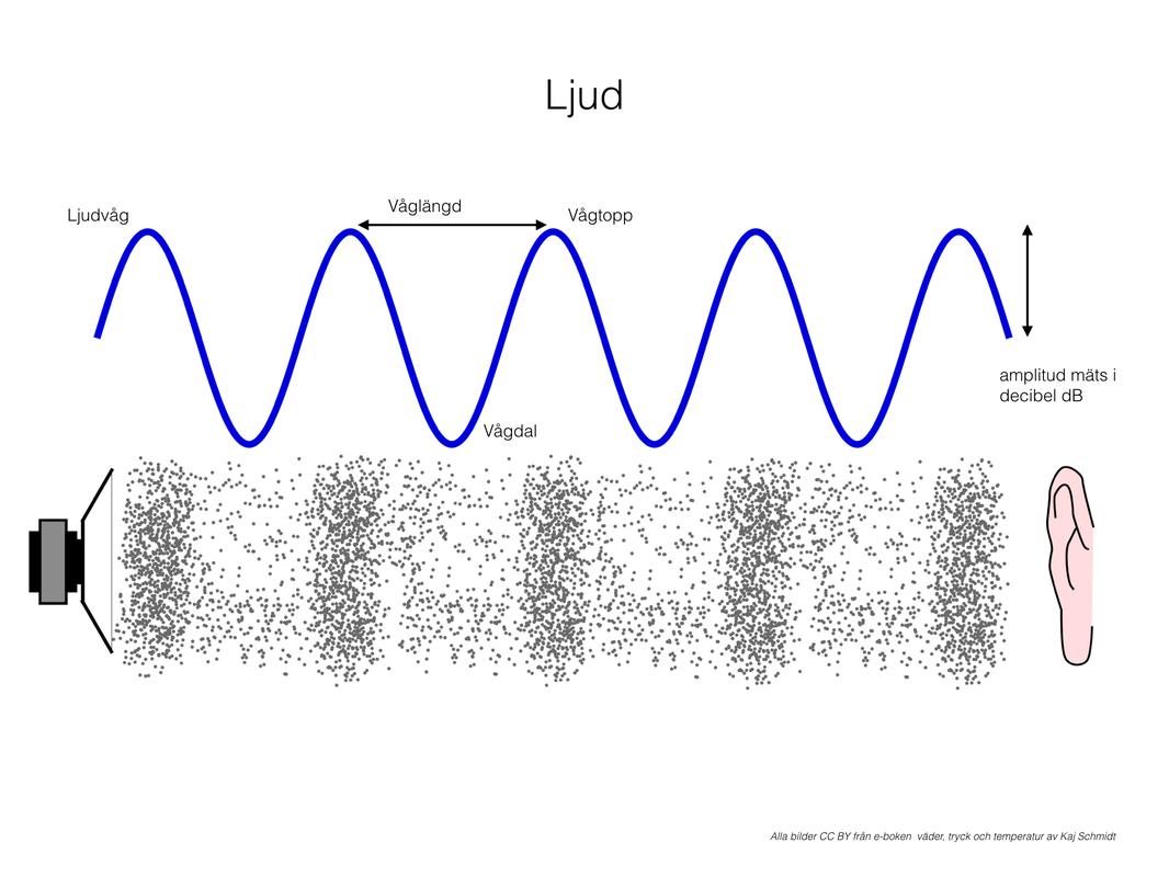 Begrepp Ljud
