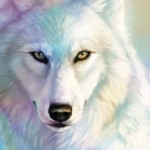 Profile picture of wolfcub