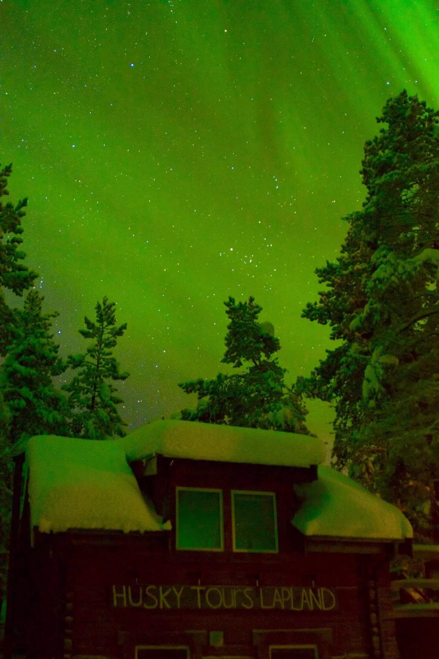 northern lights husky tours blog