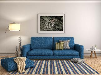 Blue living room rug ideas