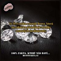 Lidský diamant