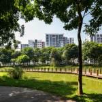 Công viên nội khu Celadon