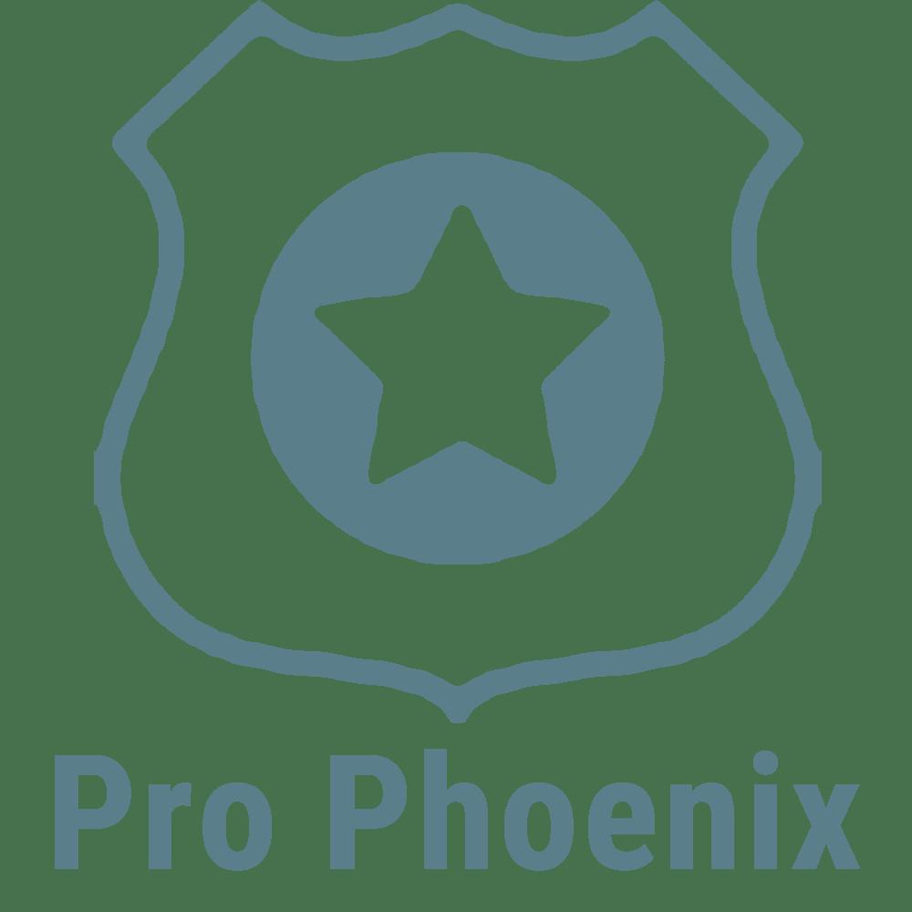 Pro Phoenix Logo