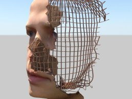 Rebar face 2