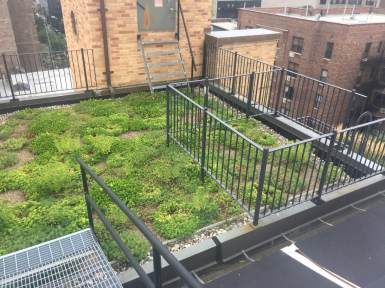 Lenox Hill - NYC Green Roof - Highview Creations