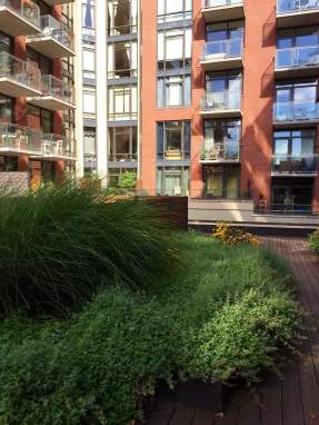Highview Creations-101 Bedford-Green Roofs NYC 4