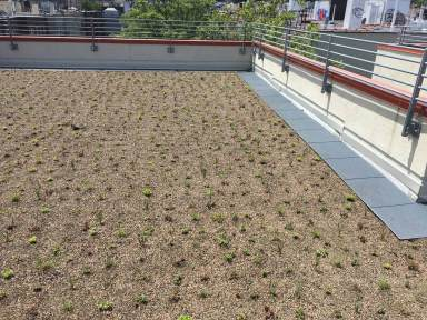 Highview Creations-552 Academy-Green Roof NYC 5