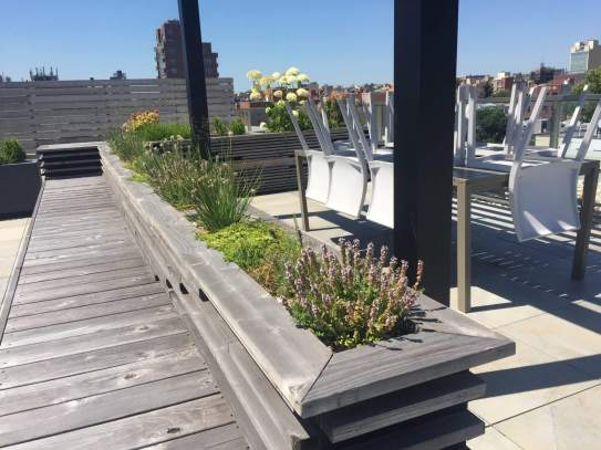 Highview Creations-FH Green Roof-NYC-6