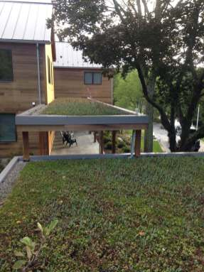 Highview Creations-Green Roof-NYC-4