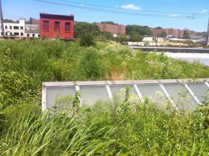 Highview Creations-Linda Tool Green Roof - NYC 1
