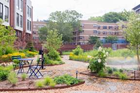Highview Creations-Maujer Courtyard-Green Roofs NYC 11