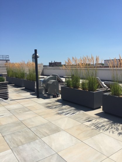 Fort Hamilton Parkway - Brooklyn Extensive Green Roof - Highview Creations