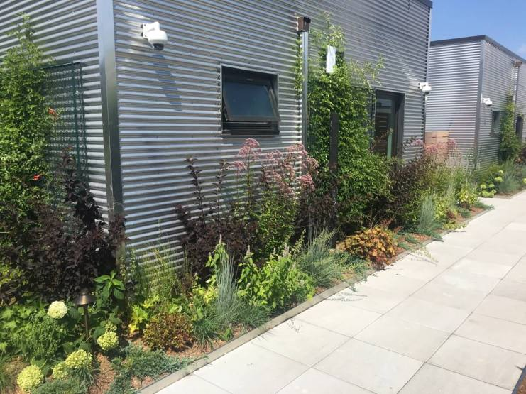 One Duffield - Green Roof Design NYC Brooklyn - Highview Creations