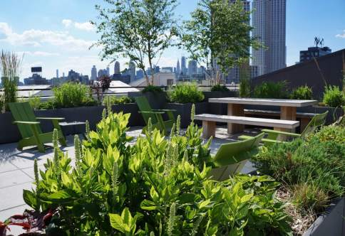 Green roof design and installation in Long Island City, Queens