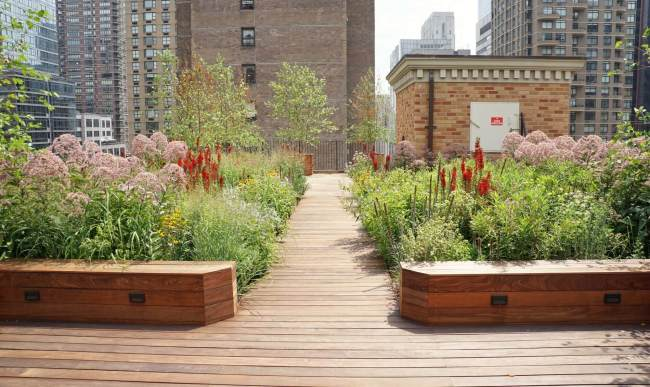 Intensive green roof in Manhattan, New York designed and installed by Highview Creations
