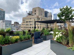 Rooftop garden with custom pergola