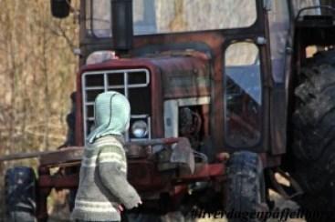 Veslebonden International traktor
