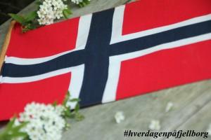 17.mai norske flagg