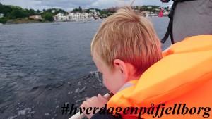 Veslekæll på sjøen