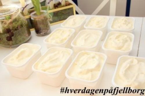 Oppskrift på hjemmelaget iskrem med vanilje