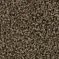 Empire Carpet Colors - Carpet Vidalondon