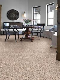 Frazee Carpet & Interiors | Zef Jam