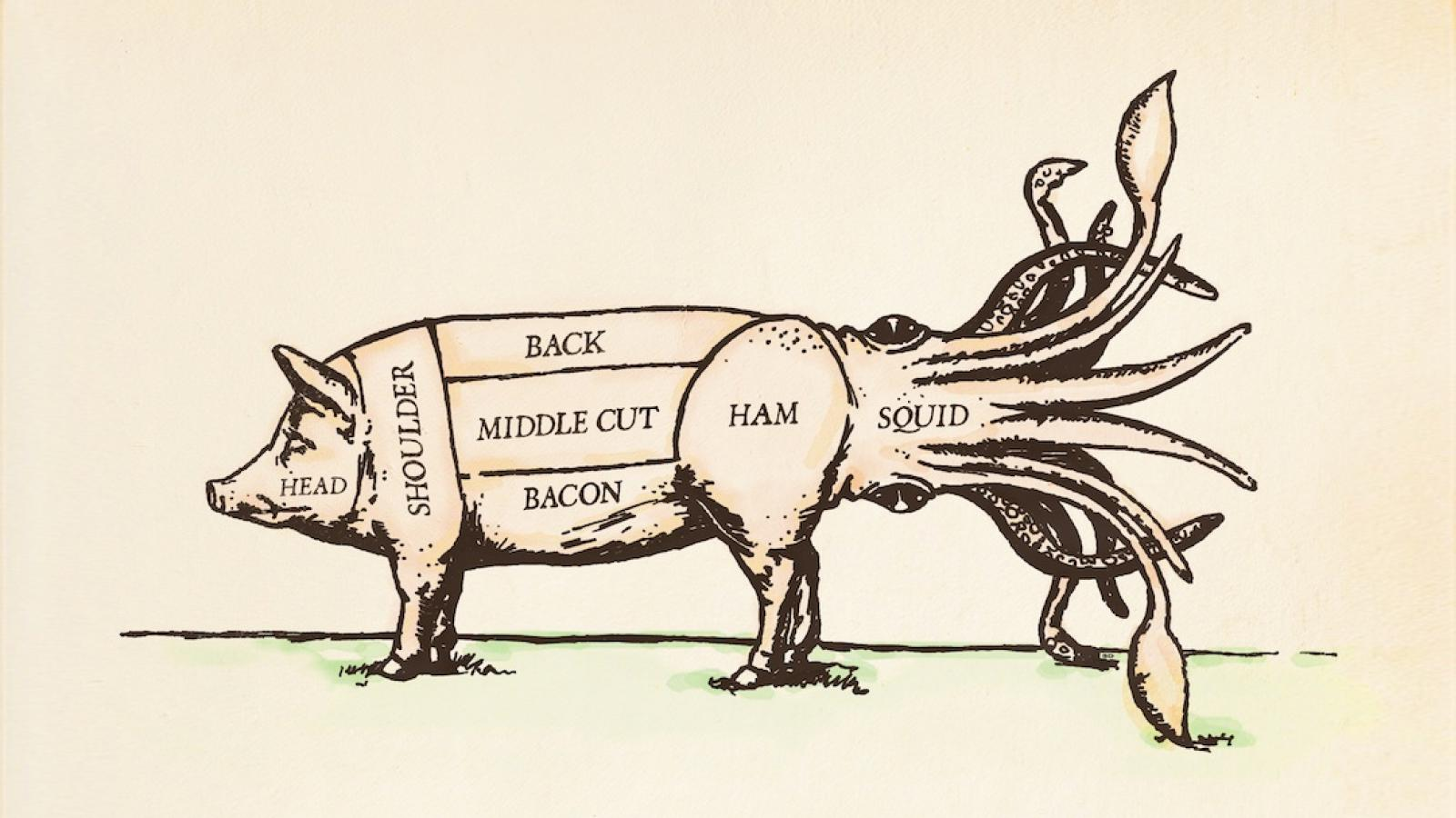hight resolution of doppelg ngers this american lifeyork pig diagram 19