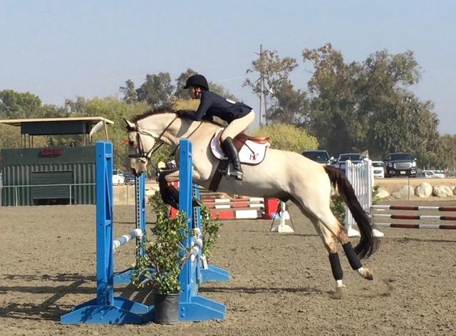Equestrian struggles in early season