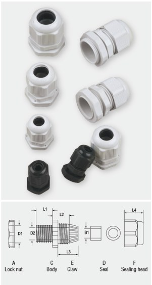 Cable Gland PG.jpg