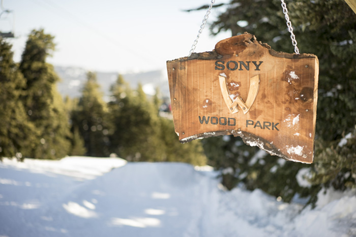 Sony WoodPark_1 1