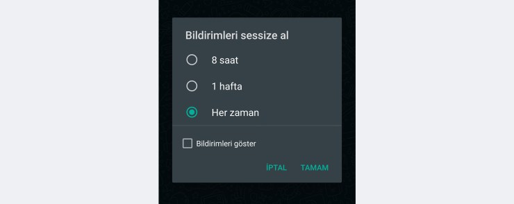 WhatsApp sessize alma