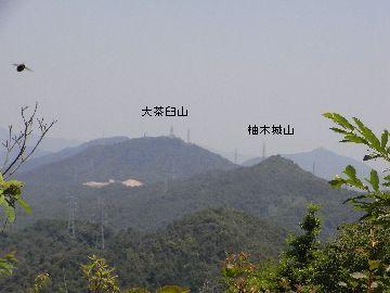 20100605-110013.jpg