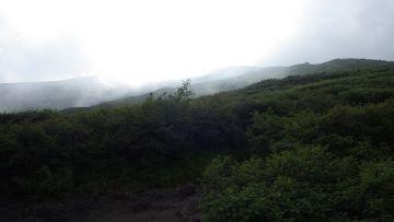 森林限界を越える