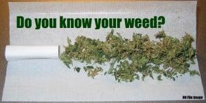 aaa weed 1111