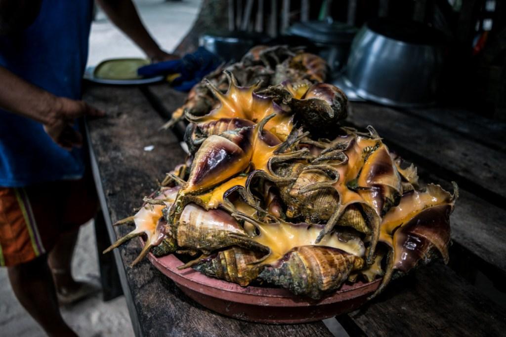 Morská špecialita na ostrove Dako